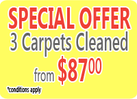 Carpet Cleaning Special, 3 carpet cleaned from $87