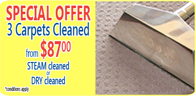 carpet steam cleaning from $89